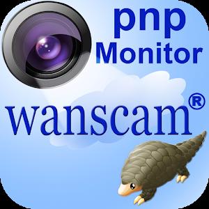 pnp Wanscam