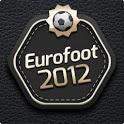 Euro 2012 foot icon
