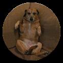 Squishy Pup logo