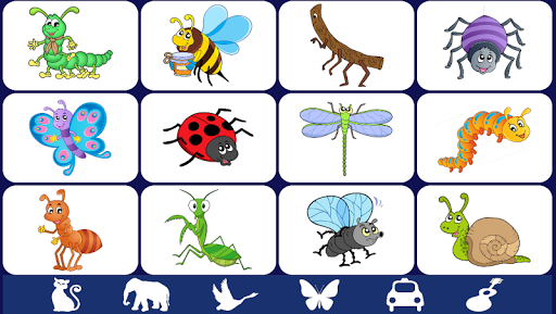 【免費教育App】Video Touch - Bugs & Insects-APP點子
