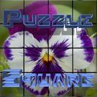Puzzle Square - Winter pack icon