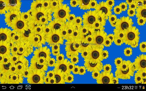 Sunflower Live Wallpaper Free