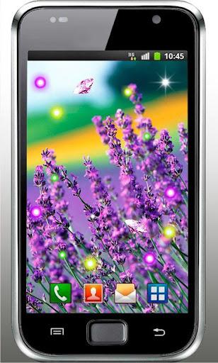 Lavender Best live wallpaper