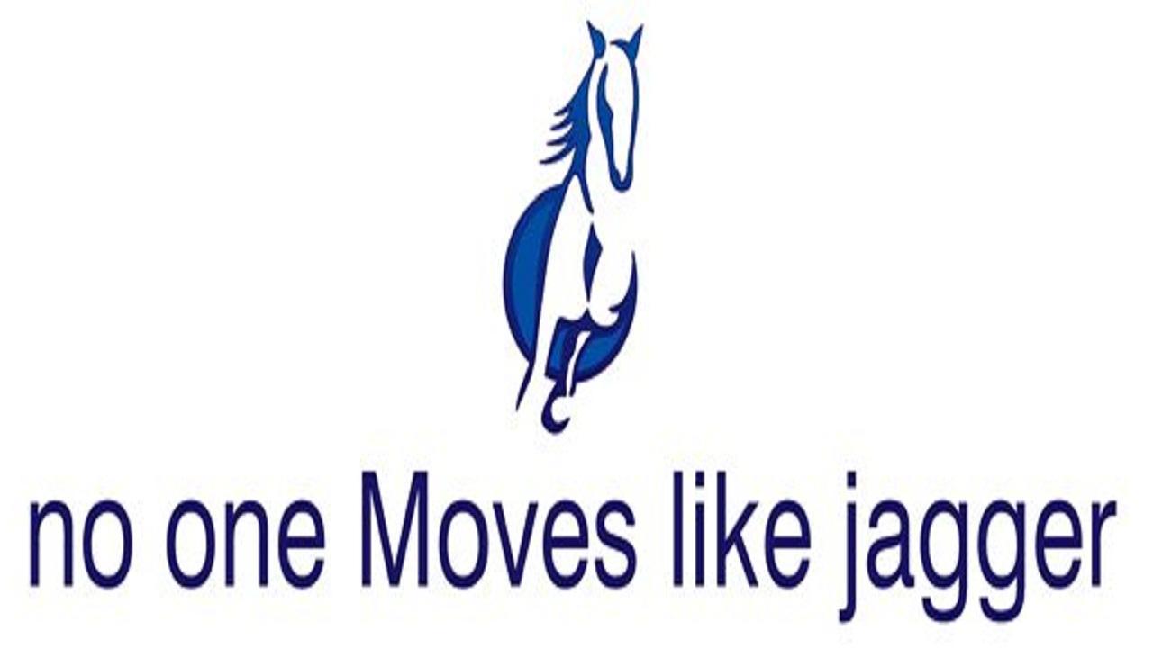 No One Moves Like Jagger! - screenshot