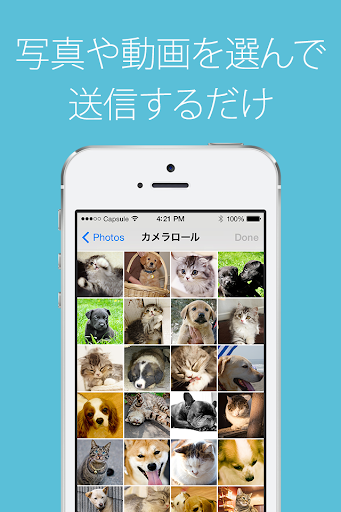 無料摄影Appの写真カプセル 〜無料で写真や動画を簡単共有!〜|記事Game