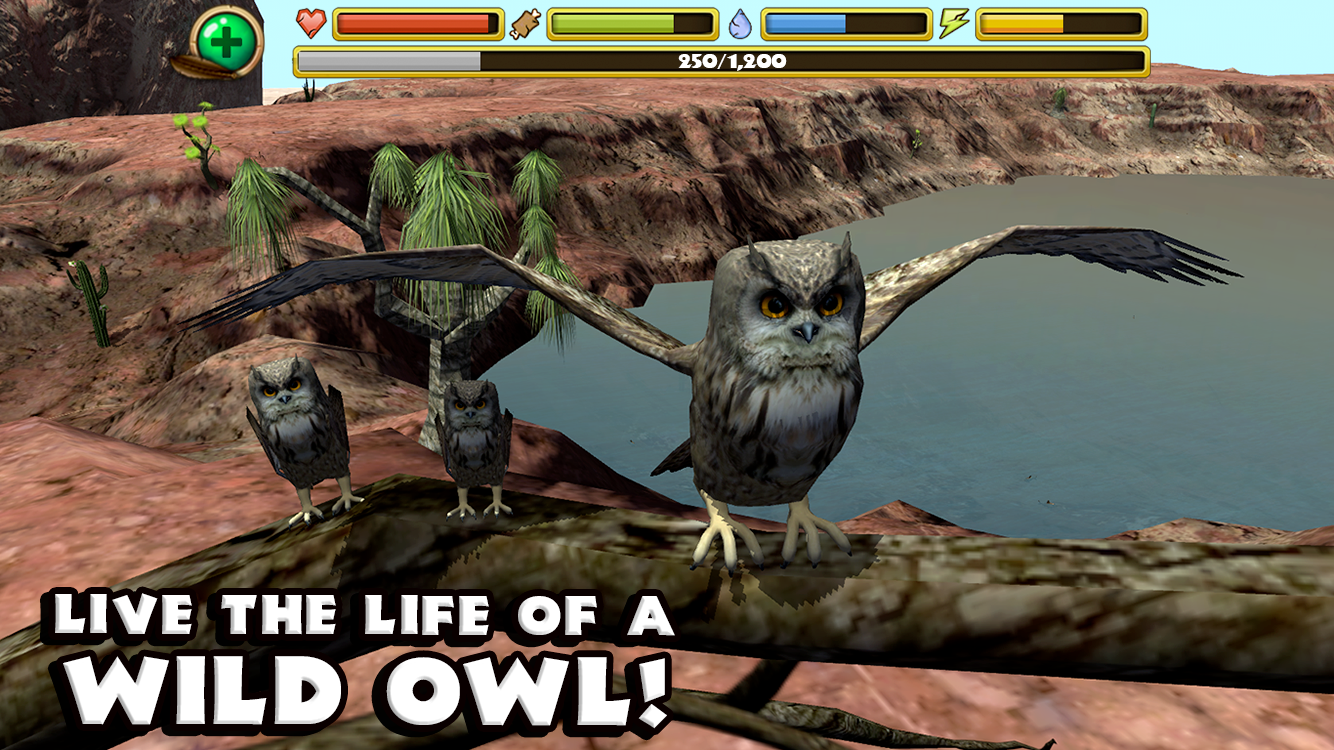 Owl Simulator- screenshot