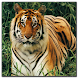 Animals jigsaw puzzle game