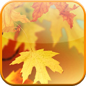 Autumn Video Wallpaper icon