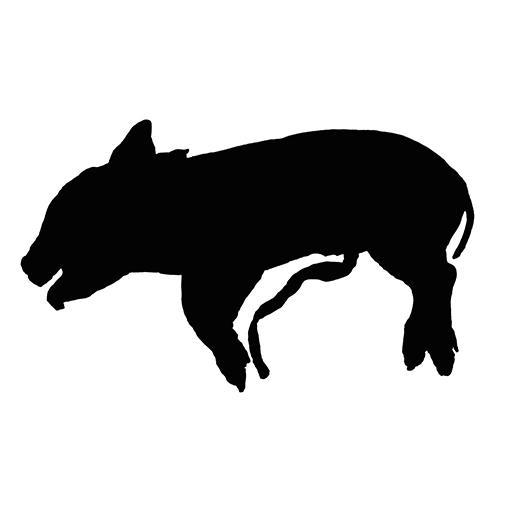 Dig a Pig
