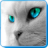 Cat Sounds mobile app icon