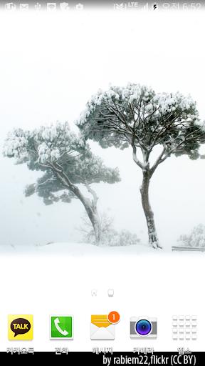 그림같은겨울나무배경