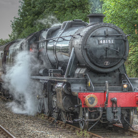 The Waverley Steam Locomotive by Simon Sweetman - Transportation Trains ( engine, locomotive, train, loco, steam )