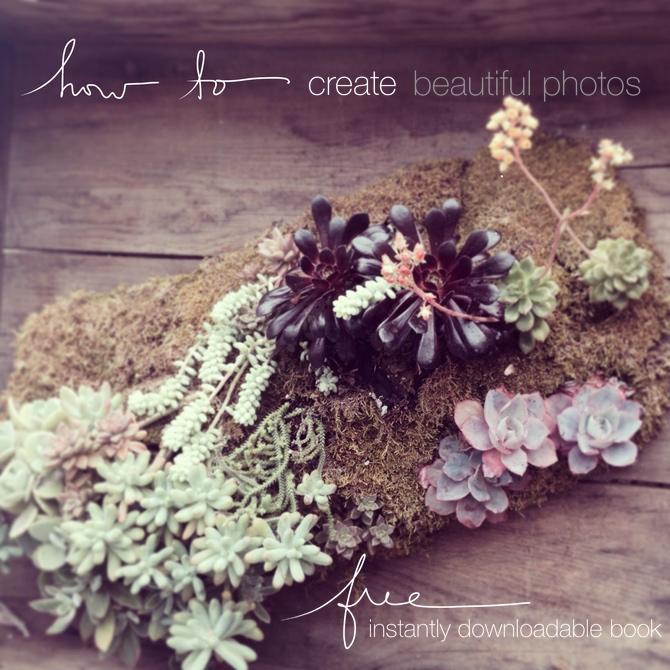 How to #create #beautiful #photos via @lynneknowlton http://www.lynneknowlton.com/blogging-erhhhmergerd-are-you-stumped/