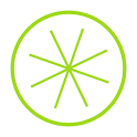 Lime - Bar Inventory icon