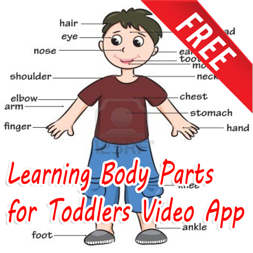 Learning bodyparts for toddler - screenshot