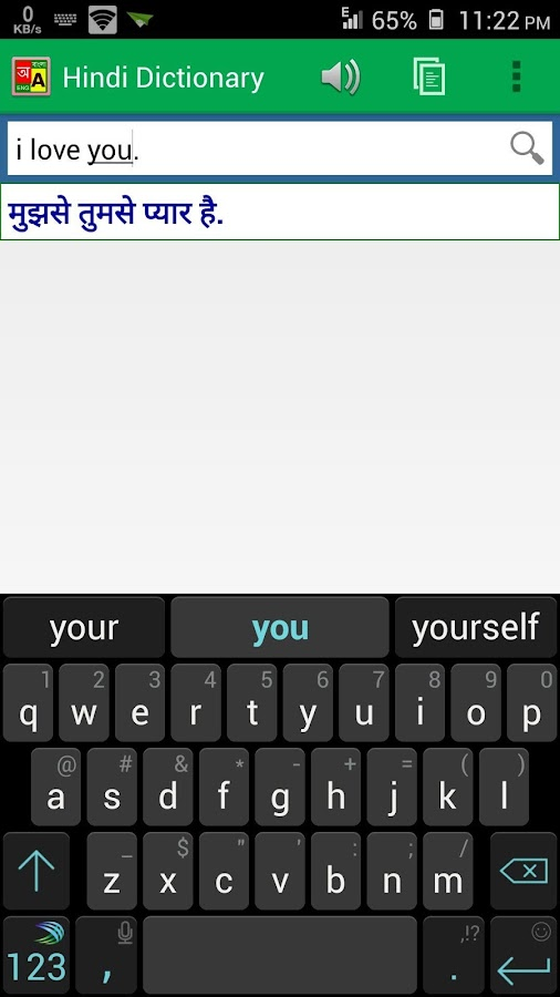 Hindi Dictionary (Offline)- screenshot