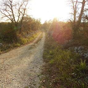 Istrian paths by Doris Družeta Brajković - Uncategorized All Uncategorized ( path, nature, landscape )