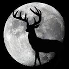 Night Hunter icon