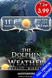 dolphin clock weather widget - screenshot thumbnail