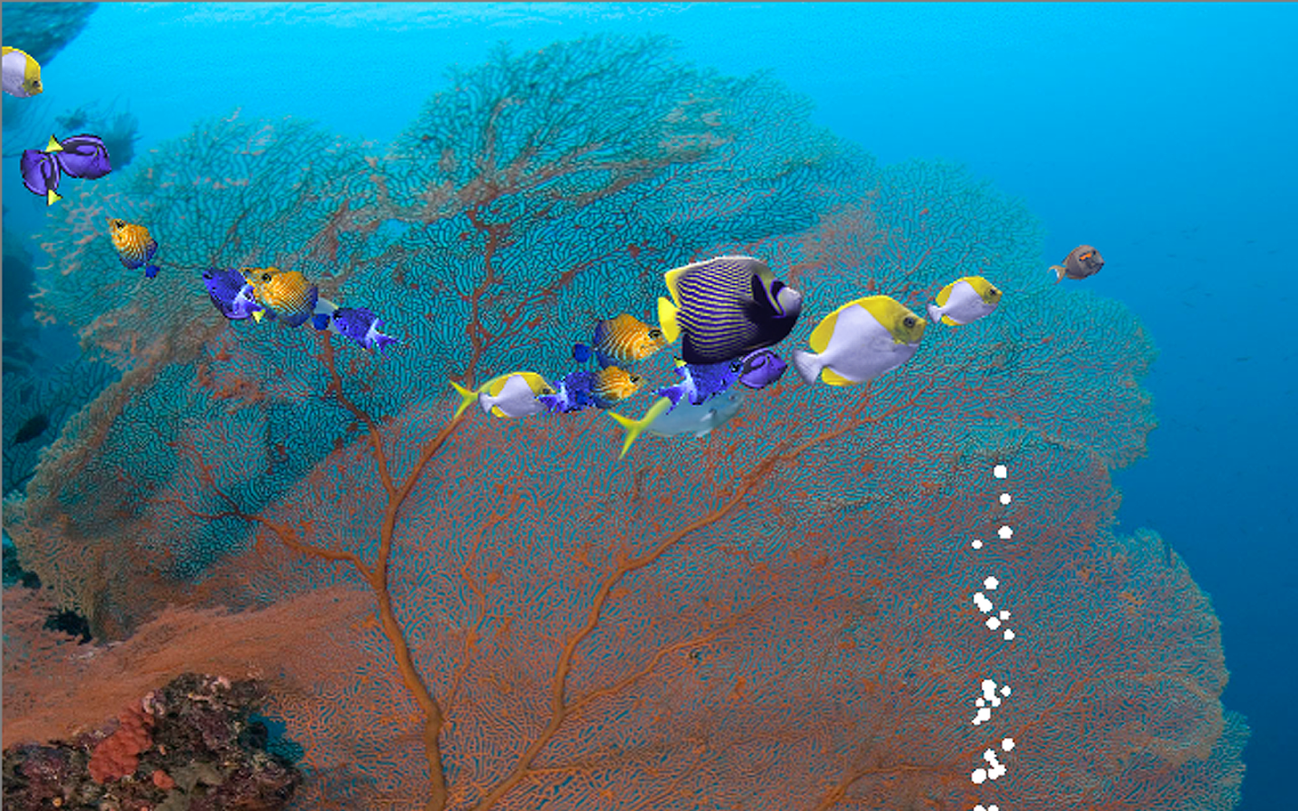 Fishies school of fish android apps on google play for School of fish