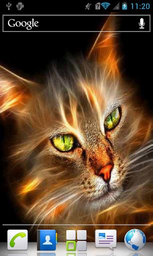 Green Eyed Cat a live