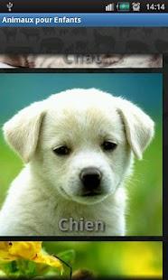 Animals Sound for Kids- screenshot thumbnail