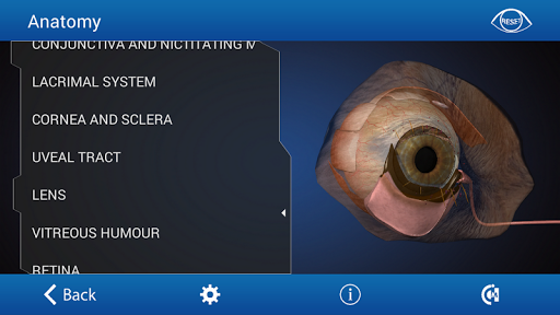 Ophthalmology in Dogs Free