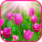 Flowers & Roses Tile Puzzle icon