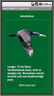 Vogels in Nederland- screenshot thumbnail