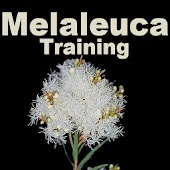 Melaleuca Business Training