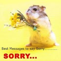 I am Sorry Messages icon