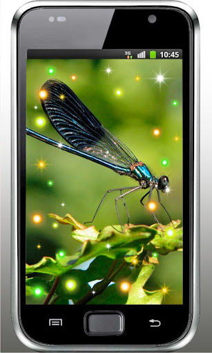 Dragonfly Best live wallpaper