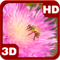 Summer Bee on Clover Flower 3D icon