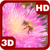 Summer Bee on Clover Flower 3D