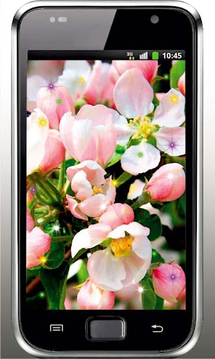 Apple Blossoms Free HD LWP