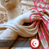App Tunisia Wallpapers apk for kindle fire