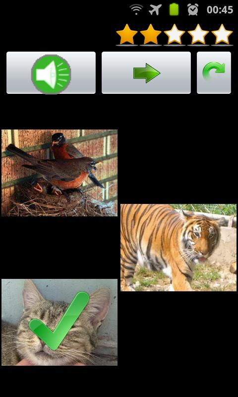 Listen to Animal & Bird Sounds - screenshot