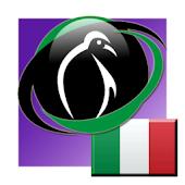 PenguinRoot Italian Verbs