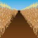 Corn Mazes logo