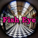 Fisheye View Gallery