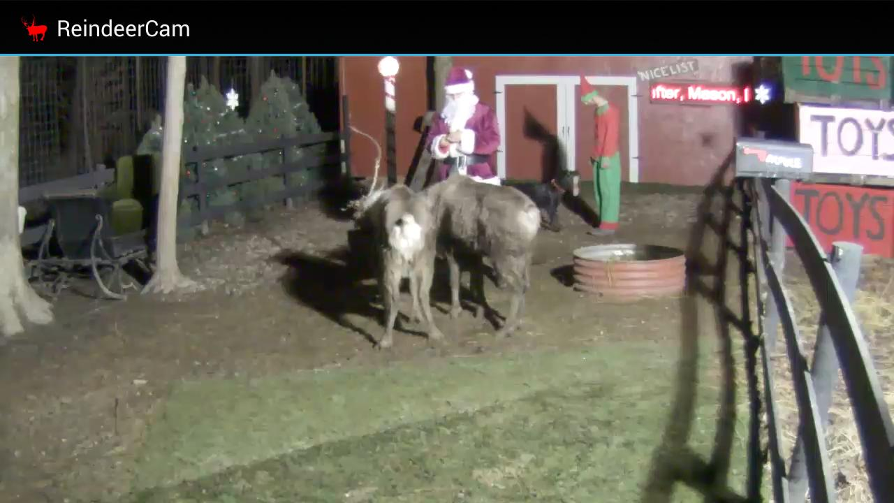 ReindeerCam- screenshot