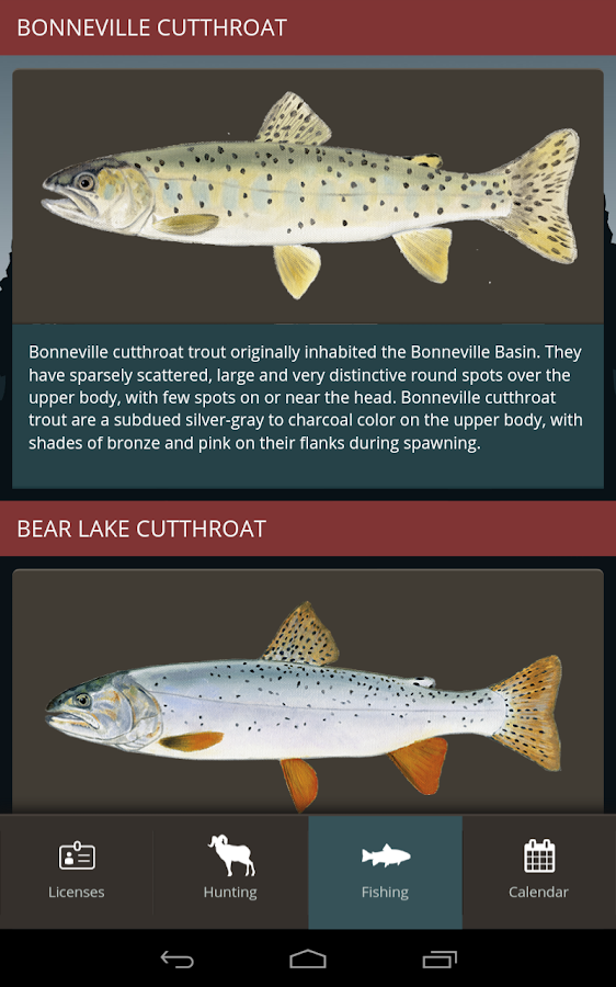 Utah hunting and fishing android apps on google play for Fish stores in utah