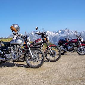 Royal Enfield by Steve Trigger - Transportation Motorcycles