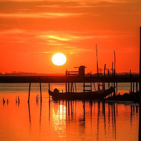 Sunset by Paulo Veiga - Landscapes Sunsets & Sunrises ( orange, wood, 2014, sundow, paulo veiga, pixoto, reflections, boat, photography, sun, stakes, ria de aveiro, sunset, reflections on water, silhouettes, portugal,  )
