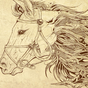 The Horse by Taufik Nur Hidayat - Drawing All Drawing