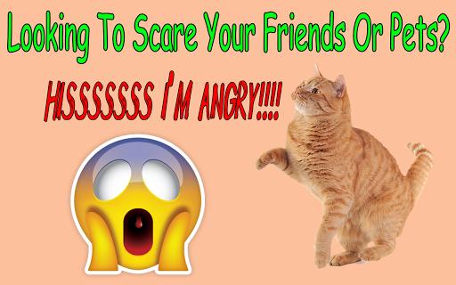 Cat Hiss Sound Prank App