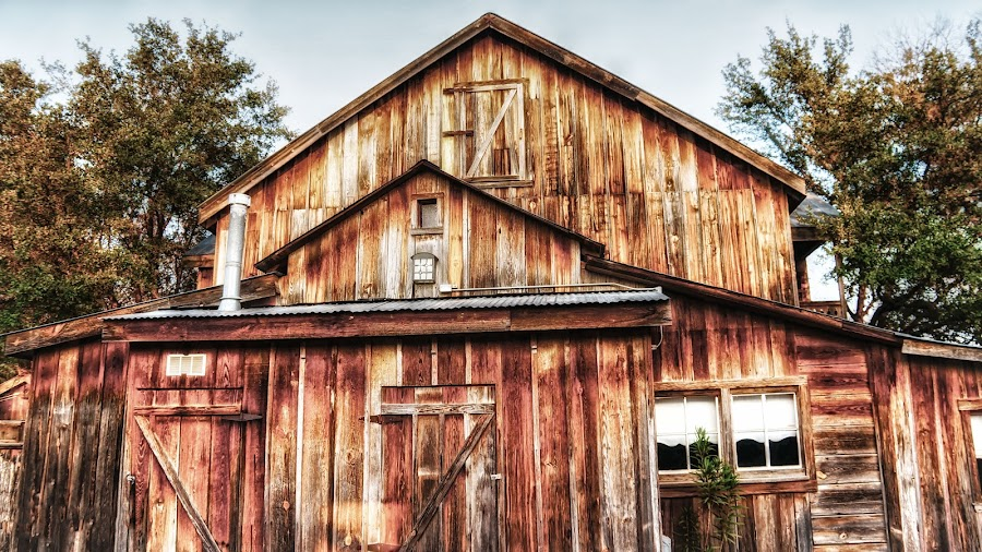 The Old Barn Home by Scott Walker - Buildings & Architecture Other Exteriors ( wood, barn, texas, rustic, country )