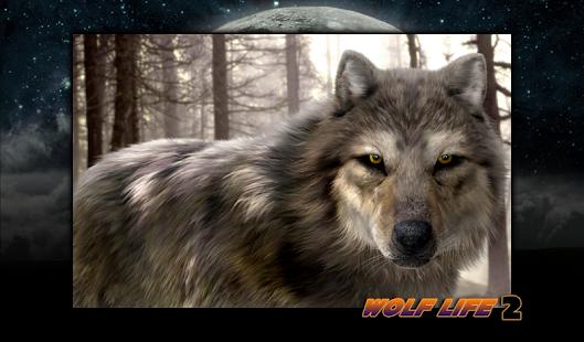 Wolf Life 2