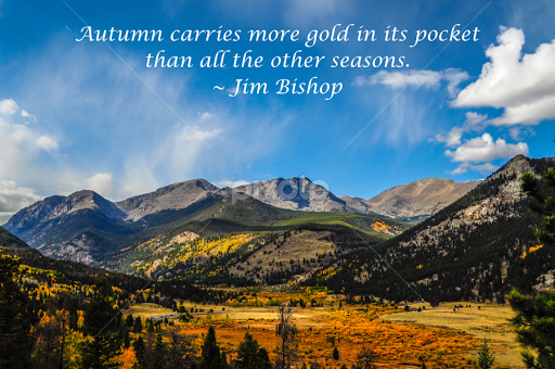 Autumn Carries More Gold In Its Pocket By Jennifer McWhirt   Typography  Quotes U0026 Sentences (