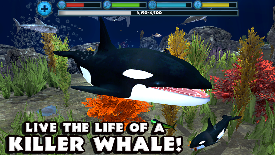 Orca Simulator- screenshot